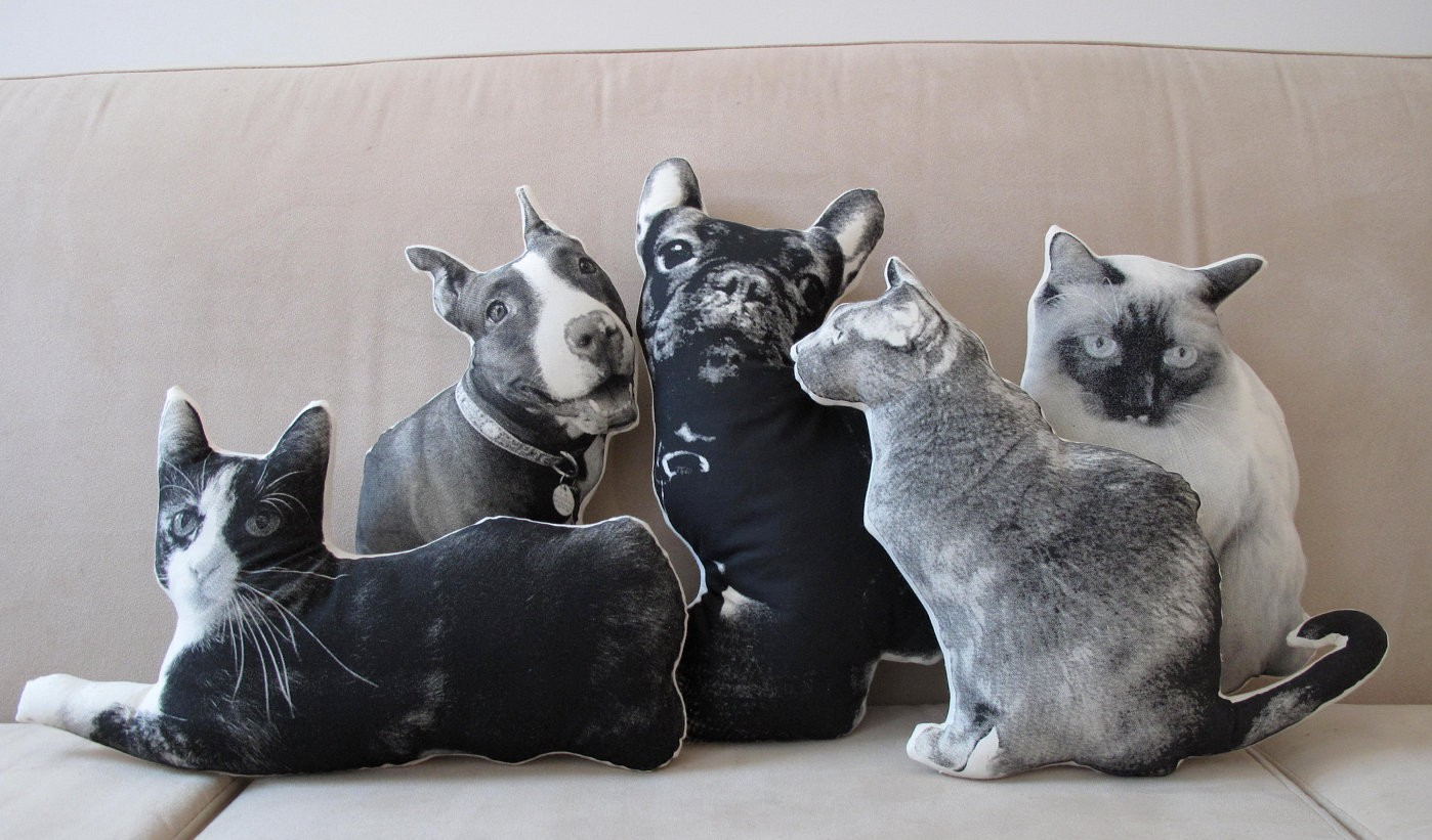 Custom pet pillows e1371786465298